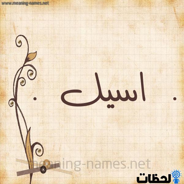 معنى اسم اسيل Aseel