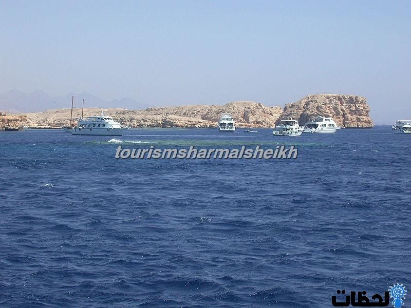 رحلات داخليه في شرم الشيخ