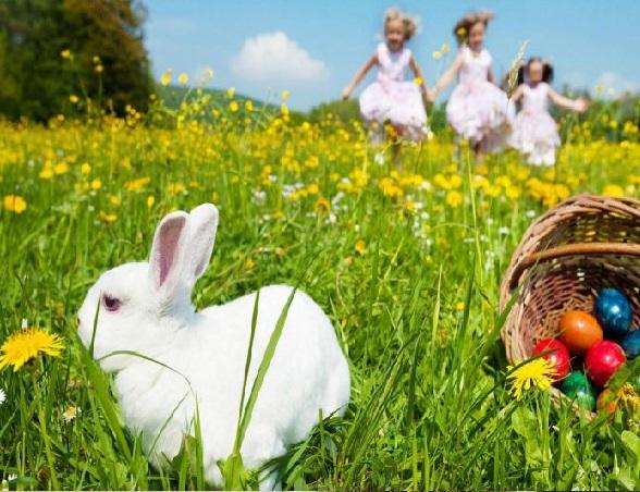 موضوع تعبير عن موسم الربيع