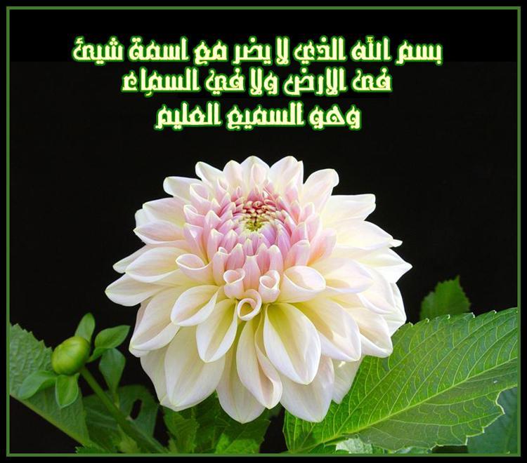 ادعية ثابتة عن النبي صلي الله علية وسلم