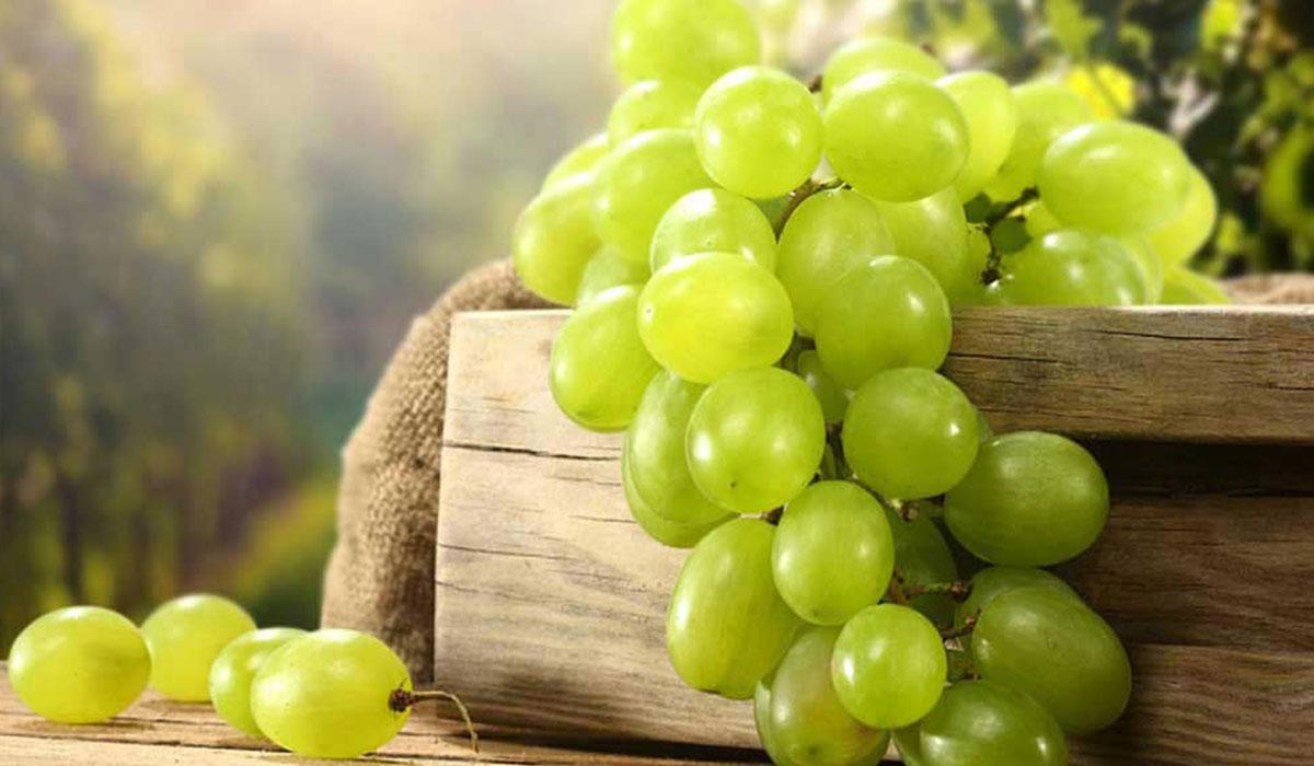 فوائد العنب للرجيم والصحة – ما هي فوائد العنب الاحمر