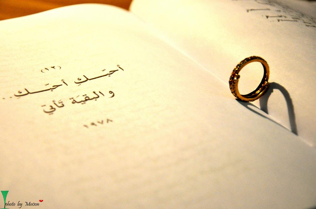 احبك احبك والبقية تاتي