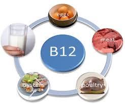 زياده فيتامين b12في الجسم