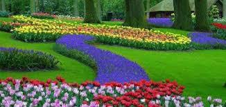 انشاء موضوع تعبير عن الربيع للصف الثاني متوسط