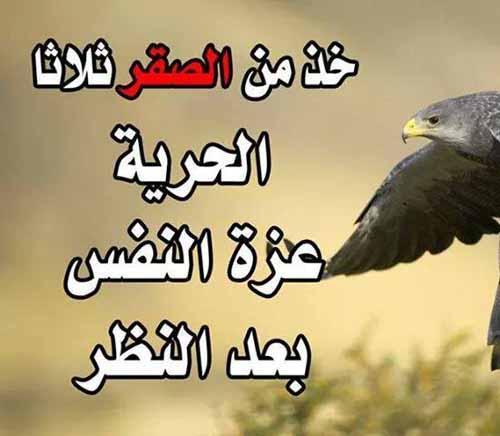 افضل حكم و اقوال عن عزة النفس وقوة الشخصية