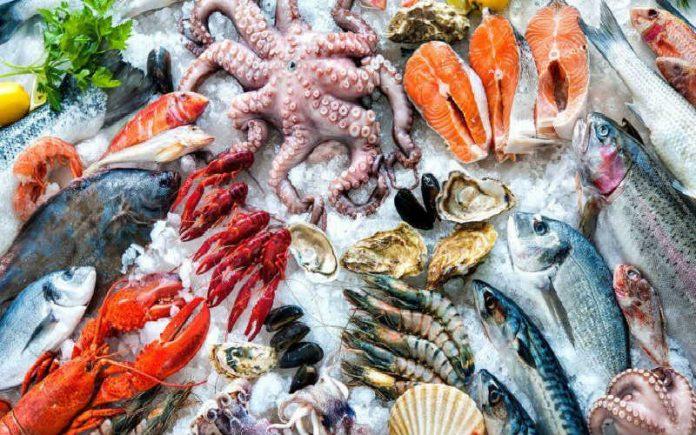 ما هي ثمار البحر