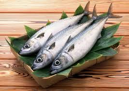 ماذا يغطي جسم السمكة