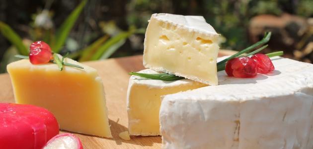 ماهي فوائد الجبنة – أضرار الجبنة البيضاء