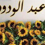 معنى اسم عبد الودود