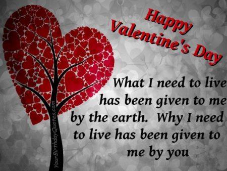 رسائل عيد الحب مسجات عيد الحب للموبايل